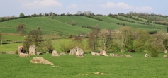 Shows some of the standing stones in their countryside landscape.