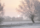 A crisp misty winter morning on the Levels.