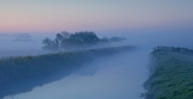 Early morning misty rhyne on the Somerset Levels.