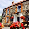 The Pheasant Inn -  Wookey