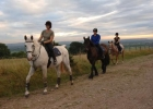 Horseriding can take you into many areas of the Mendip Hills that are not accessible by car.